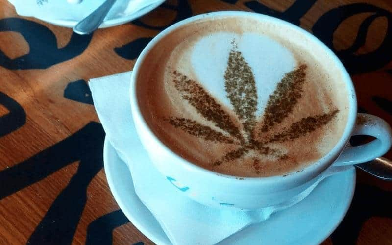 marijuana leaf in a coffee cup