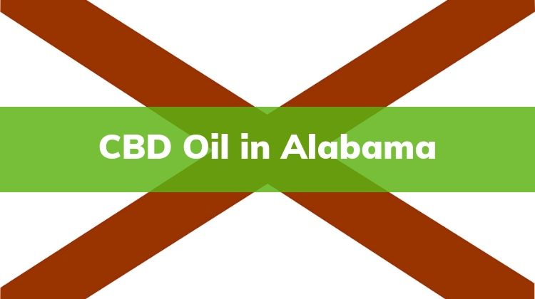 CBD Oil, Oil in Alabama, Buy CBD Oil