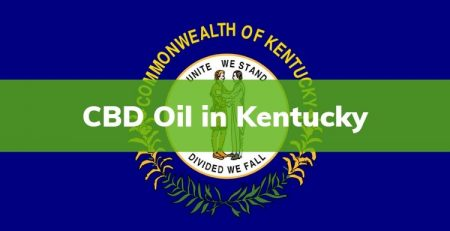 Where to buy CBD Oil in Kentucky , CBD Oil in Kentucky , Buy CBD Oil , Kentucky